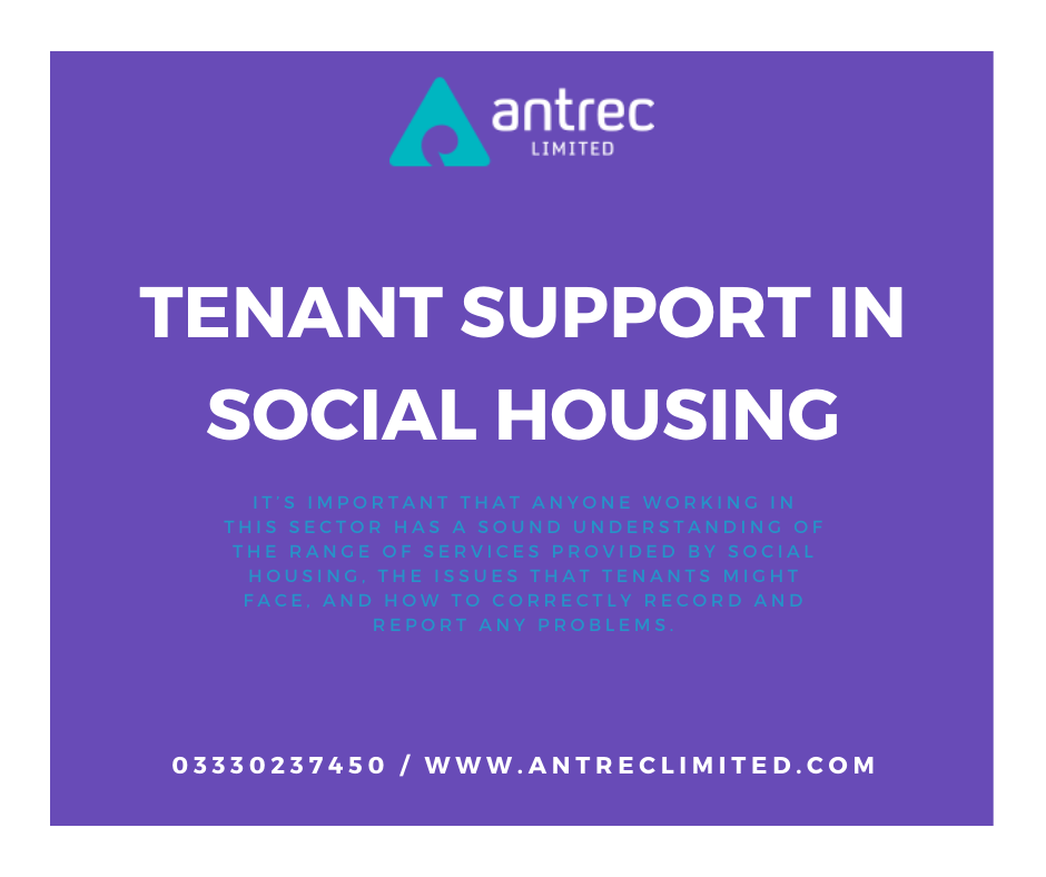 Tenant Support in Social Housing Image